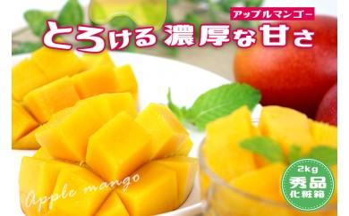 【2018年発送】沖縄県産マンゴー 4玉~6玉(約2kg)【化粧箱・秀品】