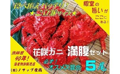 CC-03009 【北海道根室産】花咲ガニ5尾オスメス混合(計2.8kg以上)[413459]