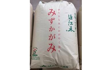 K073H29年産 環境こだわり米「みずかがみ」玄米30kg【17,000pt】