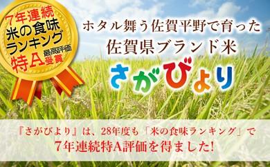 J77 みやき町産『さがびより(精米)』特A受賞【毎月20kg】