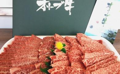 [№4631-1247]特別商品!【お得!!オリーブ牛焼肉セット】たっぷり1kg ※11/29日受付以降は年明けの配送となります
