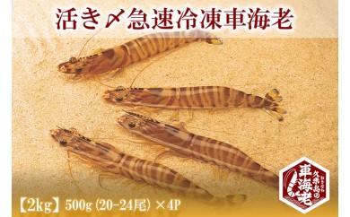 活き〆急速冷凍車海老500g(20-24尾) ×4P【2kg】