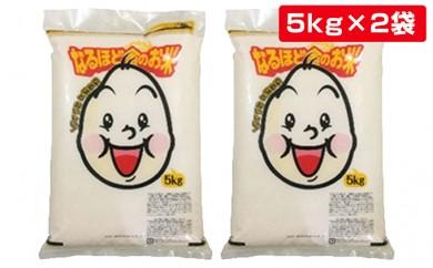 [№5685-0237]29年産秋田県産コシヒカリ白米10kg(5kg×2袋)