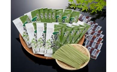 【G017】八女星野茶うどん(つゆ付き40袋)