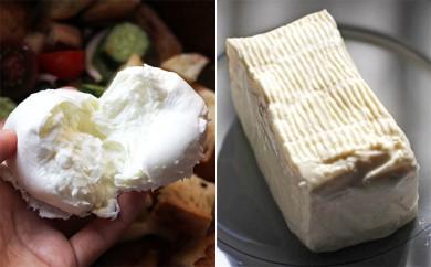 [№5749-0221]湖水地方牧場のモッツァレラチーズ