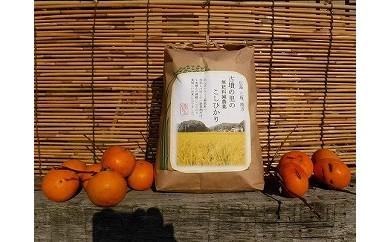 AF07 古墳の里の無肥料減農薬こしひかり(低温熟成米)7kg【50pt】
