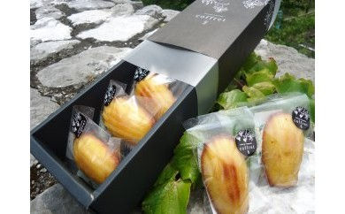 BL21 土佐山の柚子マドレーヌセット【300pt】