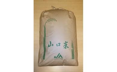 29C-052 徳地清流米きぬむすめ玄米60kg