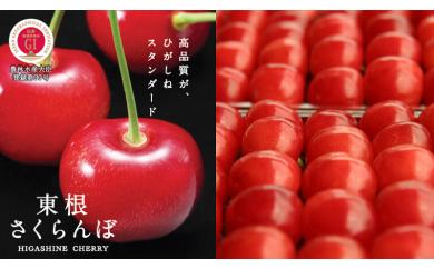 A-0624 2019年GI制度登録「東根さくらんぼ」 佐藤錦1kg化粧箱詰め JA産直提供