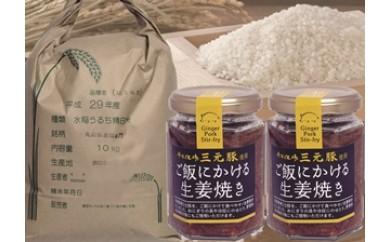 NB387 平成29年産はえぬき精米10kgとご飯にかける生姜焼2個