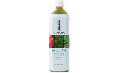 B506 健康道場おいしい青汁900g×1ケース