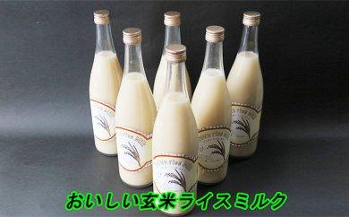 B-007 ★栄養補給に★玄米ライスミルク【ダイエットに】
