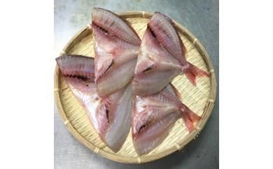 【No.223】老舗魚屋の鯛の干物 4枚