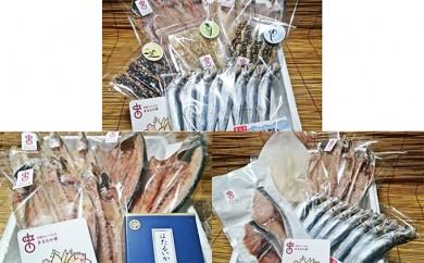 [№5684-1198]年間3回定期便!職人手作り地魚一夜干と季節の味(氷見ぶり、ホタルイカ、味醂干)