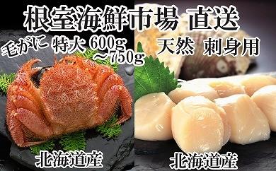 CD-14032 根室海鮮市場<直送>北海道産浜茹で毛ガニ1尾・刺身用ほたて500g[416893]