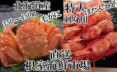 CA-14065 根室海鮮市場<直送>北海道産浜茹で毛ガニ、刺身用ぼたんえび[416885]