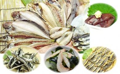 [№5684-1195]氷見の魚一夜干しと厳選氷見煮干し、伝統の味醂干し、白えび珍味、ほたるいか珍味と盛り沢山