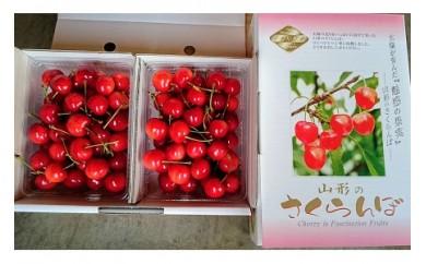 0044-007 さくらんぼ(温室栽培 佐藤錦)1kgバラ詰め