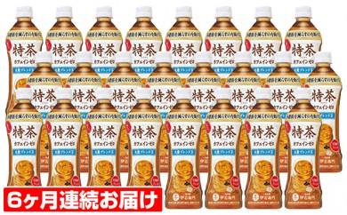 [№5820-0110]【6ヶ月連続お届け】特茶 カフェインゼロ(特定保健用食品)500ml×24本