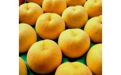 D077 初めて出会う夢みる果実 もも/黄ららのきわみ5kg(13玉~18玉) 【80pt】