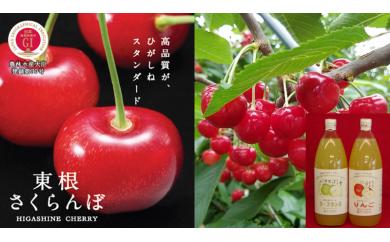 A-279 30年_さくらんぼ&フルーツジュースコース