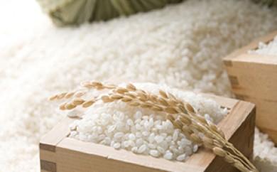 [№5706-0071]29年度米環境保全米(絹肌米)ササニシキ15kg