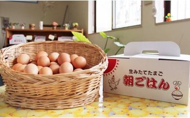 0026.小玉さんち(産地)の卵 朝ごはん【30pt】