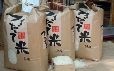 [№5856-1103]行田のお米「彩のかがやき 10kg(新米) 3ヶ月連続お届け