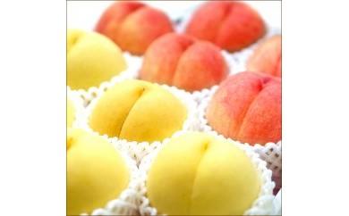 D074 故郷が育て上げた魅惑の果実 もも/黄貴妃&ゆうぞら食べくらべセット5kg(各8~9玉) 【76pt】