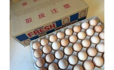 相模原市田名のおがわのたまご ピンク卵(Mサイズ)80個