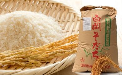 [№5672-0149]希少!白岡そだち 農薬・化学肥料を抑えた特別栽培米ミルキークイーン5kg