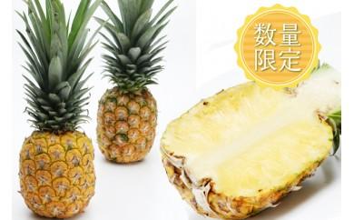 【2018年発送】東村産パインアップルお任せセット1(2~4個)