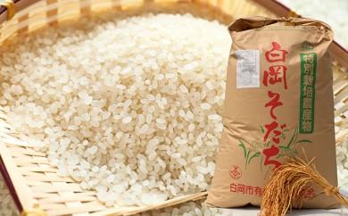 [№5672-0148]農薬・化学肥料を抑えた特別栽培米彩のかがやき10kg