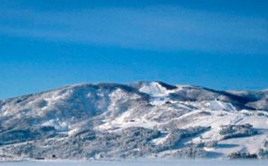 [№5673-0141]石打丸山スキー場 リフト1日券8:00~17:00<大人2枚> ※クレジット限定※