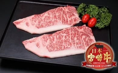MJ-2507_都城産宮崎牛サーロイン鉄板焼き用