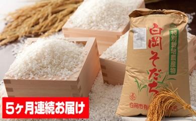 [№5672-0152]5ヶ月連続 特別栽培米セット コシヒカリ5kgと彩のかがやき3kg ※クレジット限定