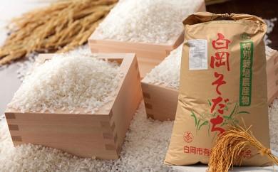 [№5672-0150]特別栽培米食べ比べセット! コシヒカリ5kgと彩のかがやき3kg