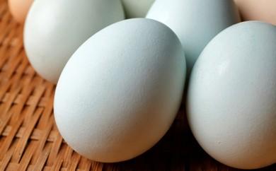 K-4 幸せの青い卵アローカナ30玉