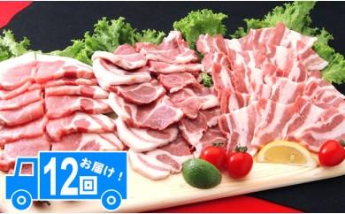 1099.ナルちゃんファーム豚肉食べ比べセット【500pt】