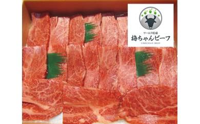 No.101 ワールド牧場 梅ちゃんビーフ 黒毛和牛 焼肉用肉 約450g