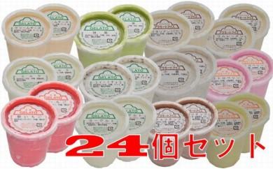 【G-46】 アイスクリーム&ジェラート24個セット