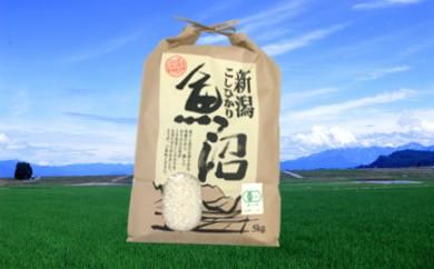 【F2903】希少!魚沼産コシヒカリ 有機栽培米5kg