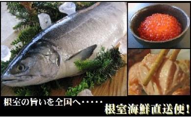 CB-19011 サケとイクラ醤油漬けの親子セット[419416]
