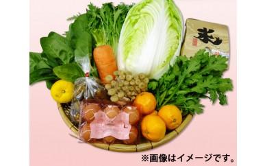 No.083 季節のお野菜詰め合わせ