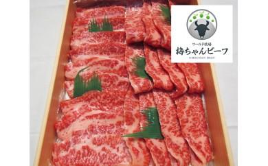 No.113 ワールド牧場 梅ちゃんビーフ 特選 黒毛和牛 焼肉用肉 約450g