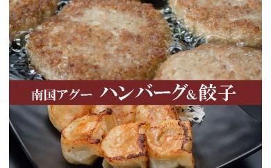 南国アグー ハンバーグ&餃子セット