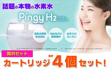 【100003】ダイエットボディケア■高濃度水素水入浴器■温泉入浴料不要