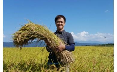 [№5737-0123]特別栽培米 清流の恵 2kg(1kg×2)