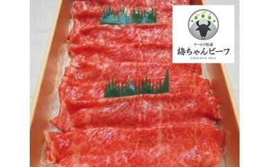 No.111 ワールド牧場 梅ちゃんビーフ 特選 黒毛和牛 すき焼用肉 約450g