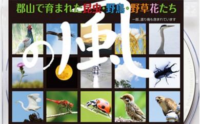 [№5902-0060]デジタル写真素材 「の風」